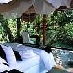 Click to go to Makanyane Safari Lodge